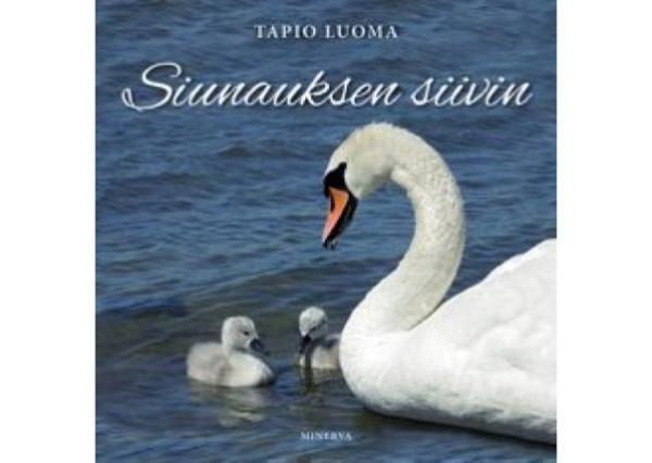 Siunauksen_siivin
