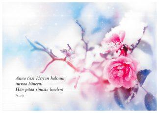 Kortti_A5___Anna_tiesi_herran_haltuun_