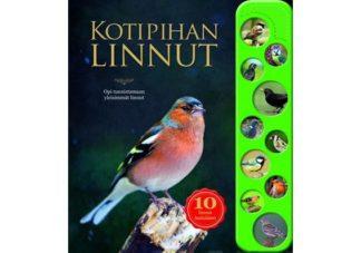Kotipihan_linnut___10_aanta