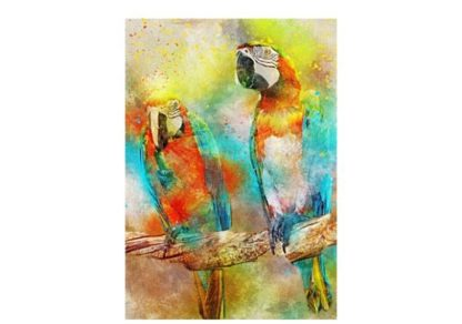 Kaksi_papukaijaa___Parrots