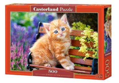 Ginger_Kitten