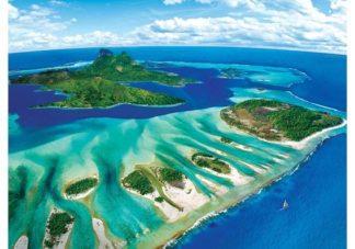 Koralliriutta___Coral_Reef__palapeli