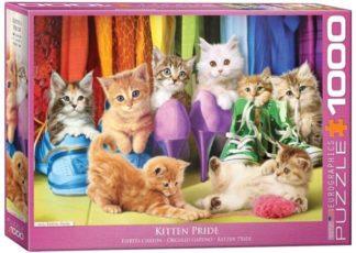 Kissanpentuja___Kitten_Pride