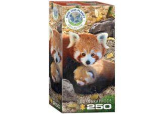 Pelasta_planeettamme__Kultapanda___Save_the_Planet___Red_Pandas