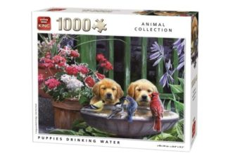 Puppies_drinking_Water