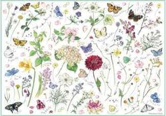 Madeleine_Floyd___Flowers___Butterflies