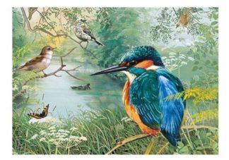 Nature_Reserve