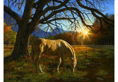Karla_Mann___Pastoral_Sunset