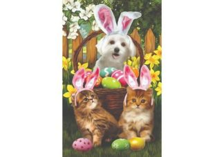 Tom_Wood___Easter_Bunny_in_Training