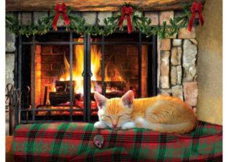 Fireside_Snooze