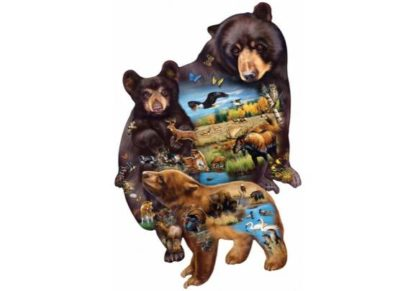 Cynthie_Fisher___Bear_Family_Adventure