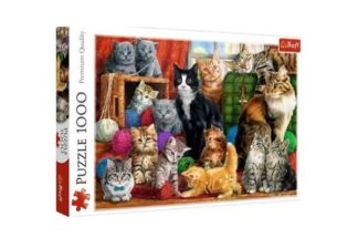 Cats_Meeting_____Puzzle_1_000_pieces