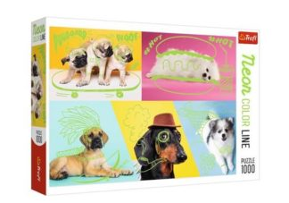 Neon_Color_Line___Dogs
