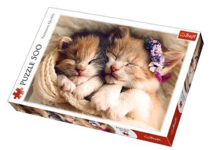 Sleeping_kittens